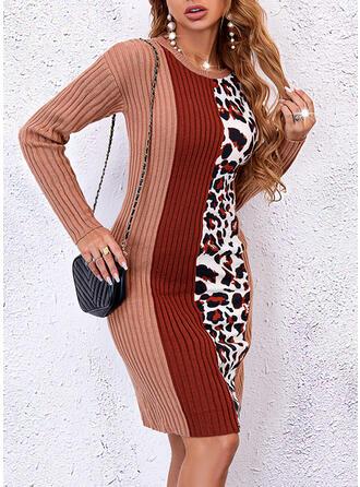 Color Block Leopard Round Neck Sweater Dress